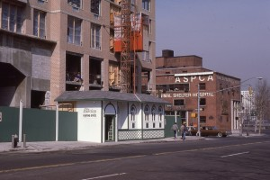 York Ave. looking towards 92nd St., NYC, Feb. 1985