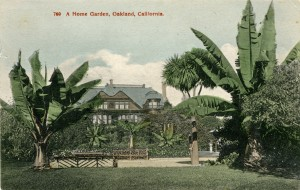 A Home Garden, F. M. Smith Residence, Oakland, California