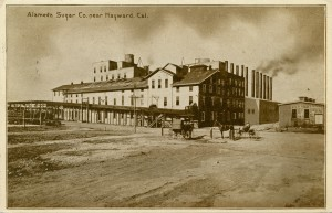 Alameda Sugar Co., near Hayward, Cal. mailed 1912