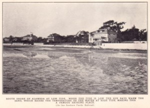 South Shore of Alameda t Low Tide
