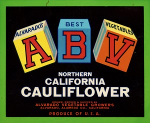 Cauliflower, Alvarado Vegetable Growers, Alvarado, Alameda County, California