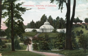 Conservatory, University of California, Berkeley, California