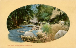 Creek Scene at Cresta Blanca, Livermore, California