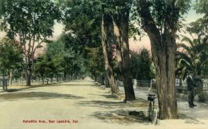 Estudillo Ave., San Leandro, Cal., mailed 1908