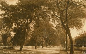 Estudillo Avenue, San Leandro, Cal., mailed 1911