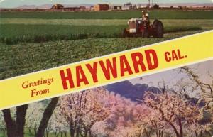Greetings form Hayward, California