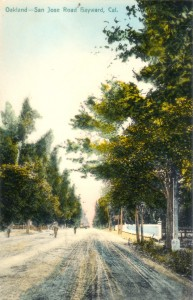 Oakland - San Jose Road, Hayward, Cal., mailed 1908
