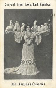 Marzella's Cockatoos, Idora Park Carnival