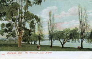 "The ""Willows"", Lake Merritt, Oakland, Cal."