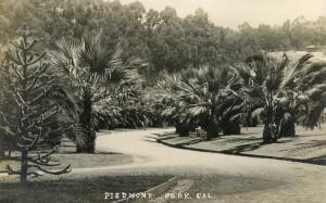 Piedmont Park, Cal.