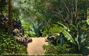 Path at Sulphur Springs, Piedmont Park, Oakland, circa 1923