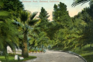 Piedmont Park, Oakland, California, mailed 1916