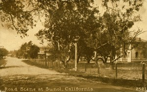 Road Scene at Sunol, California, mailed 1914