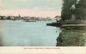Scene on Lake Merritt, Oakland, California