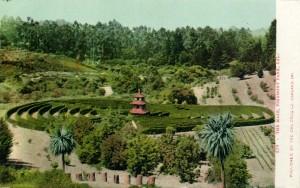 The Maze, Piedmont Park, Oakland, CAL.