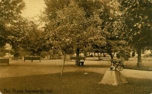 The Plaza, Hayward, Cal.