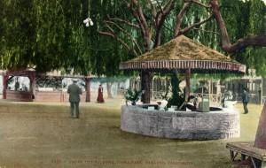 Under the Willows, Idora Park, Oakland, California