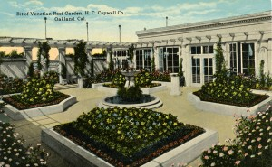 Venetian Roof Garden, H. C. Capwell Co., Oakland, California