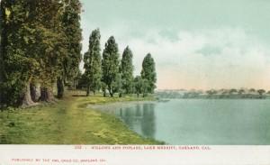 Willows and Poplars, Lake Merritt, Oakland, Cal.